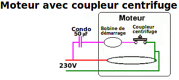 moteur-avec-coupleur-centrifuge.png